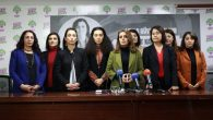 HDP'li kadın vekillerden 81 ilin şiddet verilerine ilişkin 162 önerge